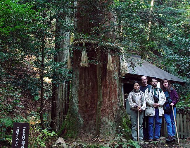 Katsura in Japan
