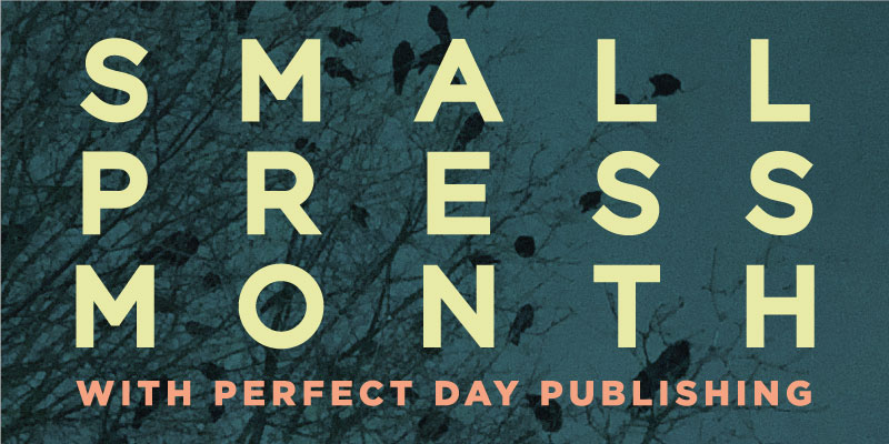 Small Press Month: Perfect Day Publishing