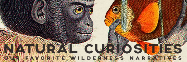 Natural Curiosities: Our favorite wilderness narratives.
