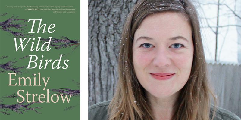 The Wild Birds by Emily Strelow