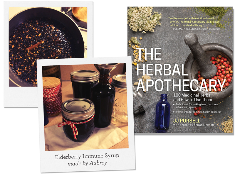 Everyone's Favorite Elderberry Immune Syrup from Herbal Apothecary by J J Pursell
