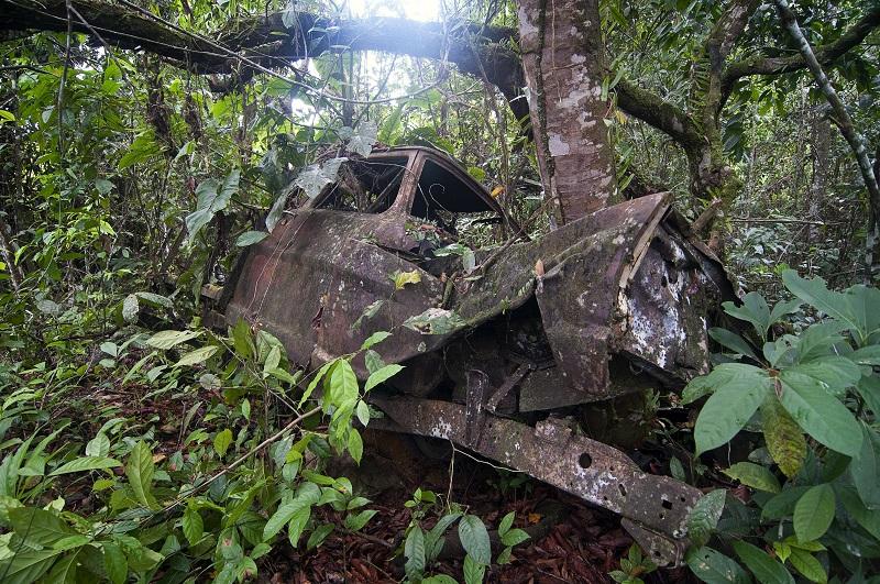 Photo: overgrown truck at the Jonestown site.