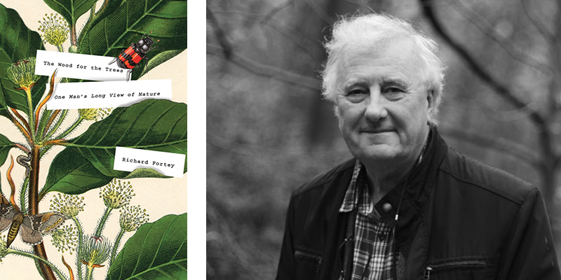 The Wood for the Trees: One Man's Long View of Nature by Richard Fortey
