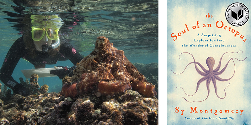 Sy Montgomery, The Soul of an Octopus