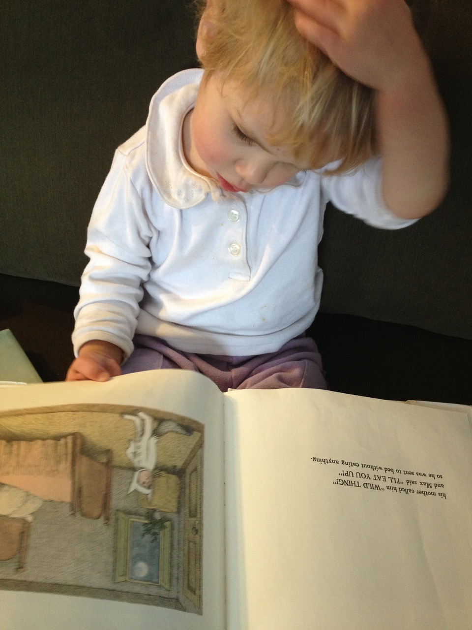 Rosenwaike's child reading Where the Wild Things Are.