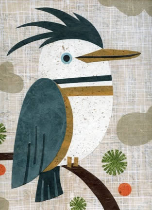 Kate Endle's kingfisher