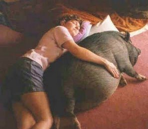IMG: A woman lying on the ground, hugging a pig.