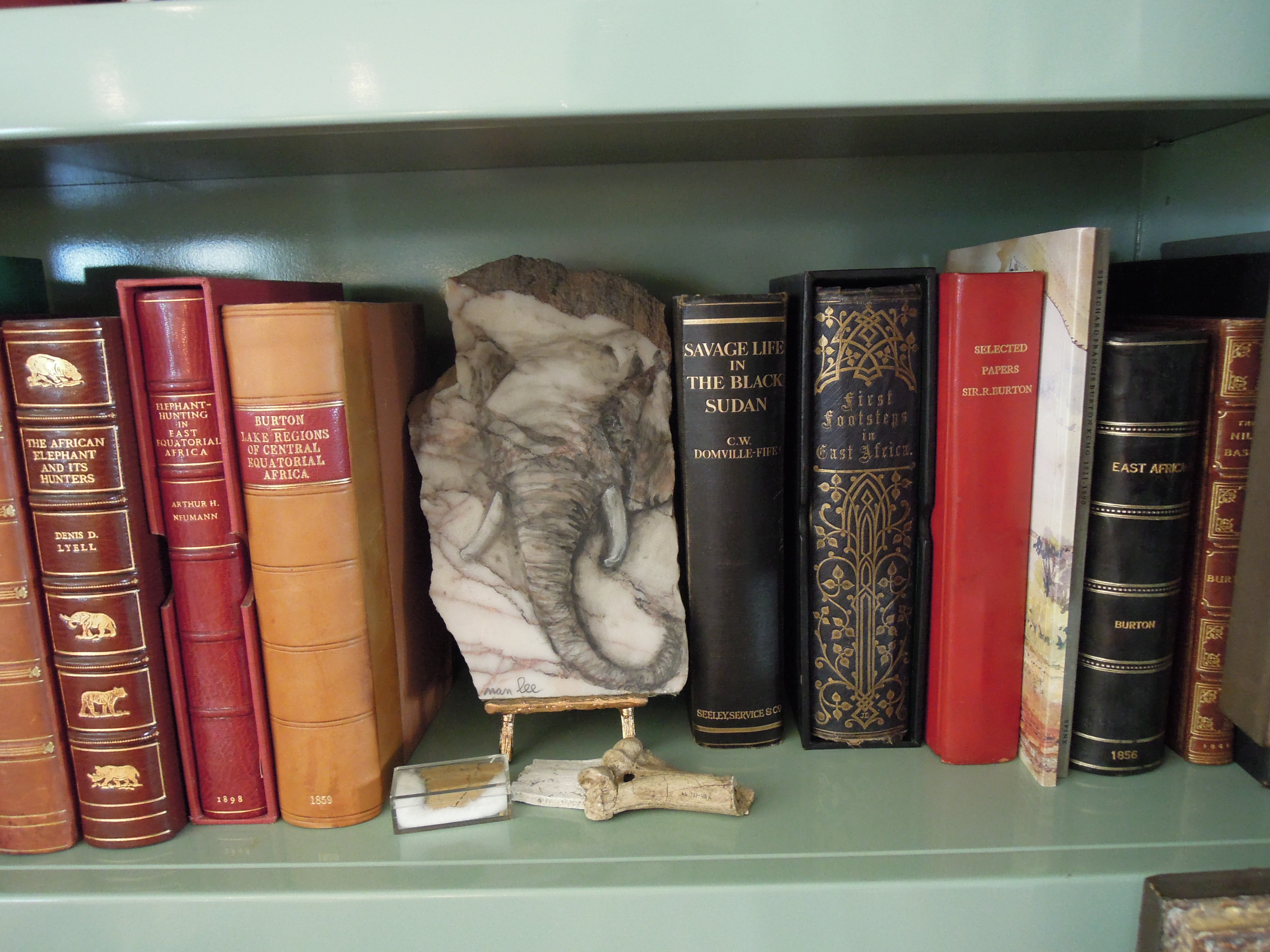 IMG: Books in library